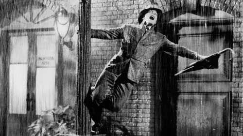 Rain or Shine - umbrellas, parasols, walking canes