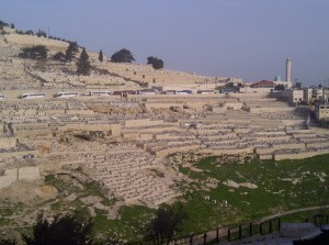 A view of the Mount of Olives.