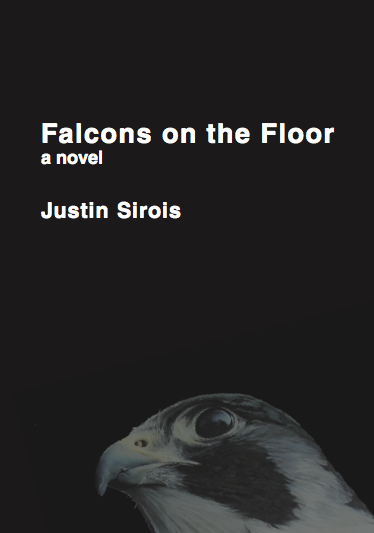 image of the cover of Falcons on the Floor