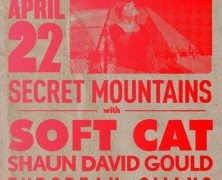 Double Secret Island Swans @ The Windup Cat Tonight